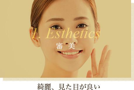 1. Esthetics(審美):綺麗、見た目が良い